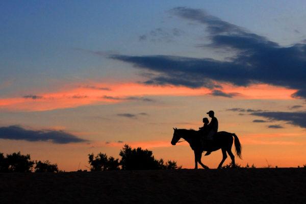 Paseos a caballo este verano bajo la luz de la luna